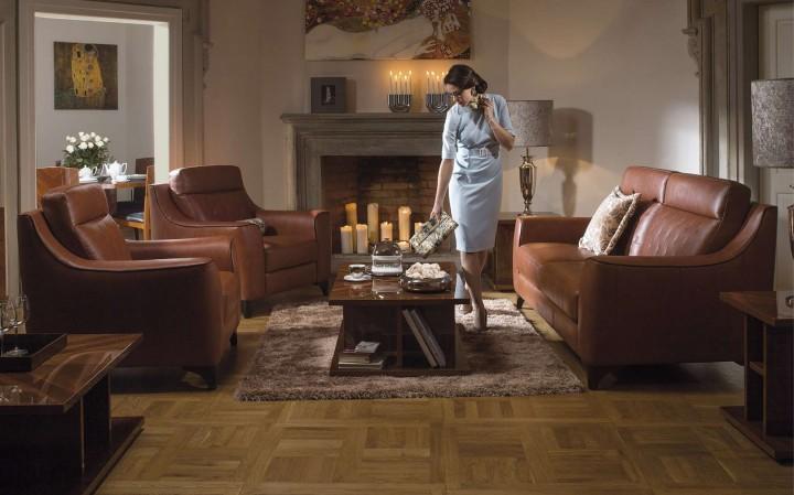 Hnědá kůže v obývacím pokoji